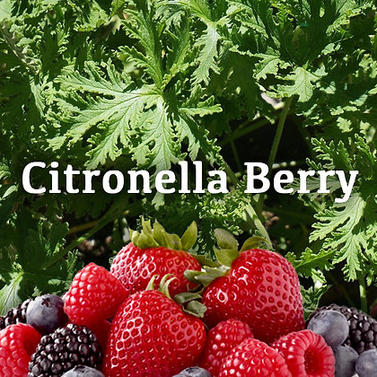 Citronella Berry Jar Candle