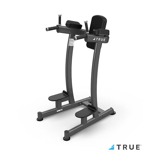 XFW-6400 Vertical Knee Raise/Dip (True Fitness)