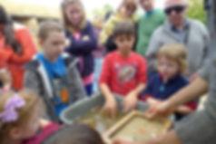 ילדים בסדנא להכנת נייר בעבודת יד מצמח התות נייר
