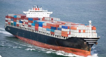 Sea Freight via CNEbuys