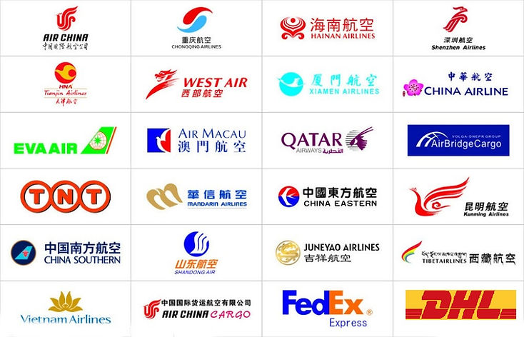 Air Freight Carrier Partners - CNXtrans.