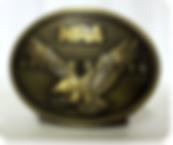 NRA Golden Eagles.PNG