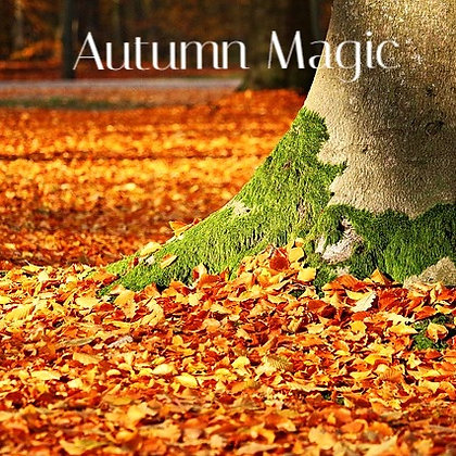 Autumn Magic Fidget Sniffer