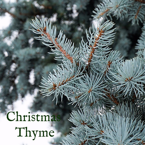 Christmas Thyme Wax Melts
