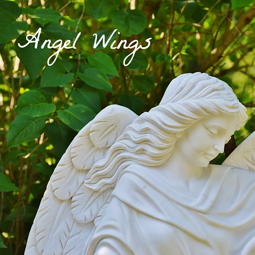 Angel Wings Fidget Sniffer