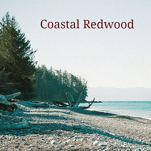Coastal Redwood Jar Candle