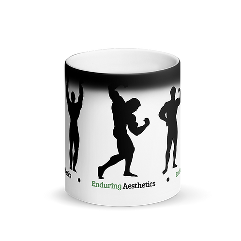 Enduring Aesthetics Mug