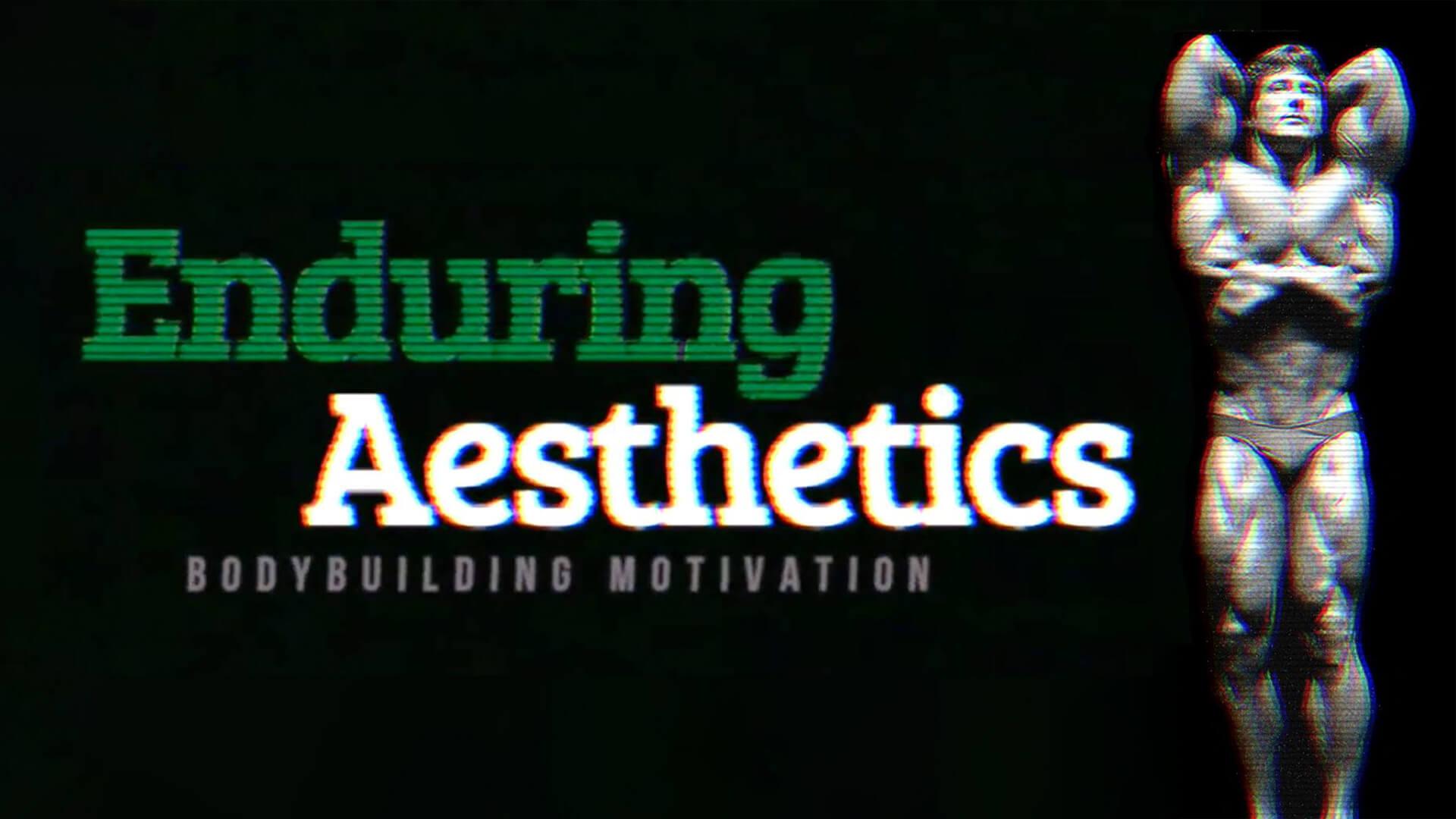 Enduring Aesthetics Youtube