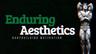 Enduring Aesthetics Youtube