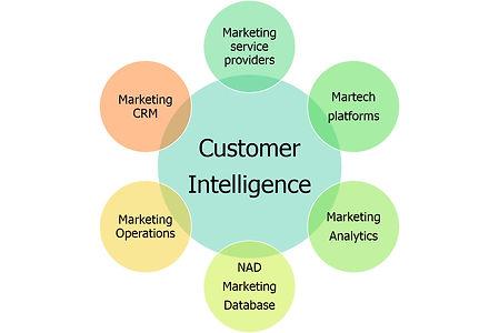 Customer Intelligence Diagram.jpg