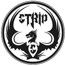 logo strip salvi.PNG