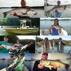 Big Ol Fish Guiding Service