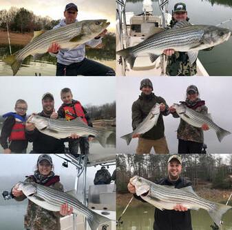 Lake Hiwassee December Striper Fishing - Trophy Fishing Season is Here!!!