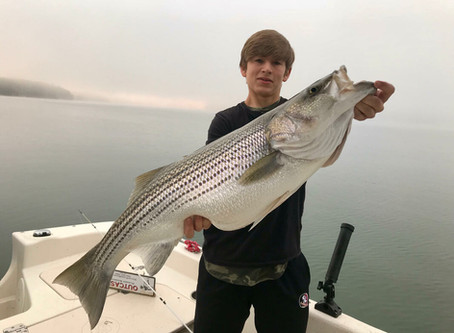 March 2019 Striper Fishing on Lake Nottely