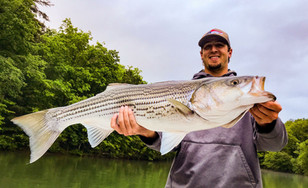 Family Fishing Charter in Murphy North Carolina
