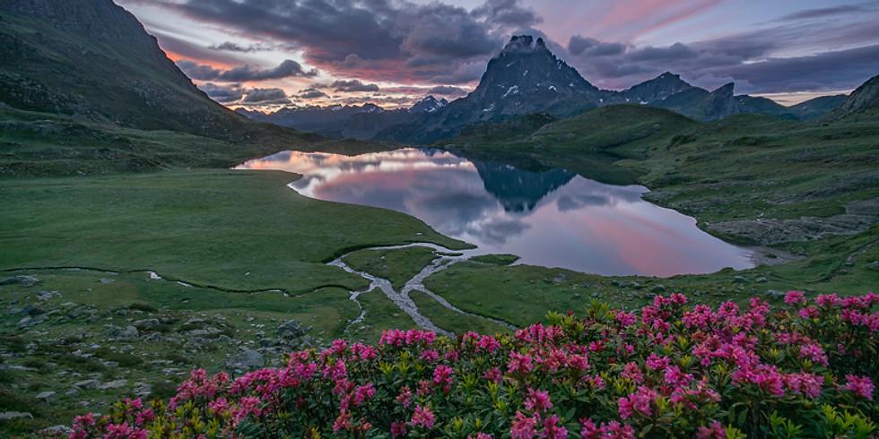 Pic d'Ossau, lacs, fleurs, torrent, voie lactée