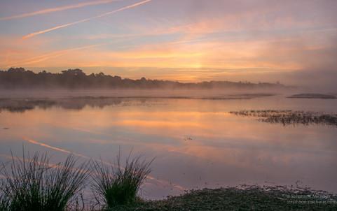 Brumes matinales au marais d'Orx