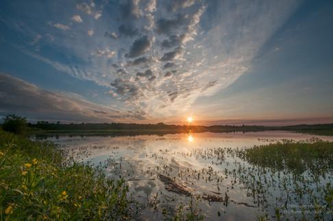 Lever de soleil au marais d'Orx