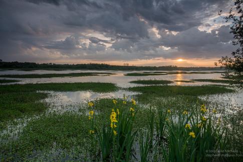 , lever de soleil au marais d'Orx