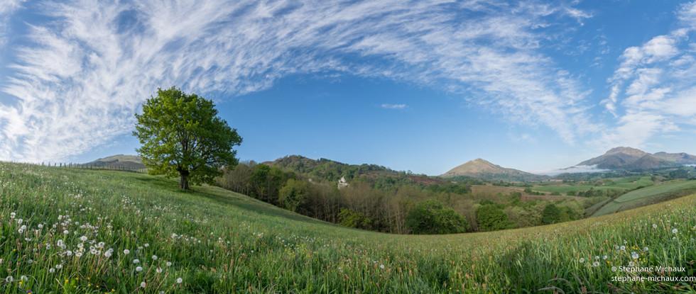L'arche de nuages, l'arbre et le pré
