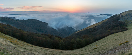 Panorama mer de nuages et forêt en automne