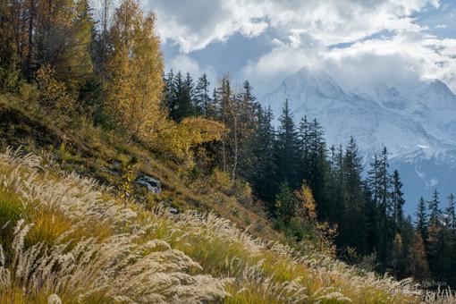 Galciers du Mont Blanc, et paysage de montagne à l'automne