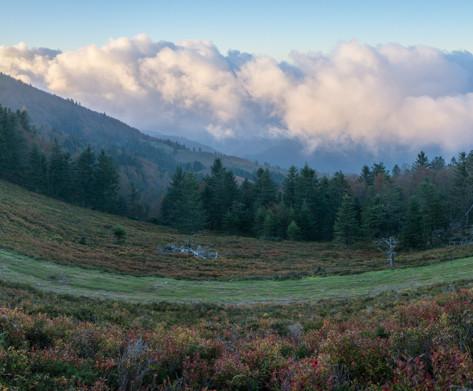Une piste à Issarbe, les myrtilliers rougeoyants aux couleurs d'automne, et la mer de nuages