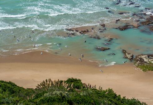 Bidart et ses piscines d'eau de mer couleur jade (2)