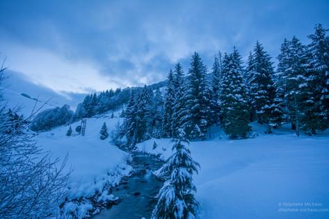 Sapins, et rivière à l'aube d'hiver