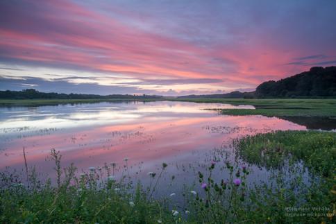 Aurore couleur rose au marais d'Orx