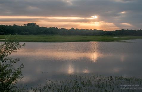 Lumières du lever de soleil au marais d'Orx