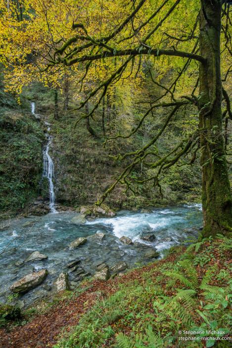 Gorges d'Holzarté et rivière