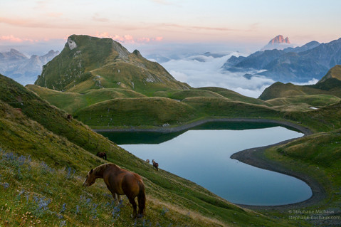 Lac du Montagnon d'Iseye, chevaux, mer de nuages, pic d'Ossau au crépuscule