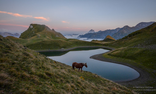 Lac du Montagnon d'Iseye, cheval, mer de nuages, pic d'Ossau au crépuscule