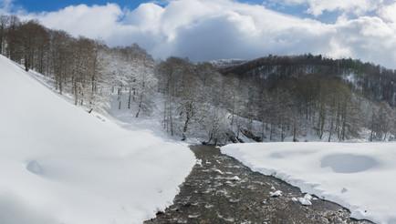La rivière et paysage d'hiver