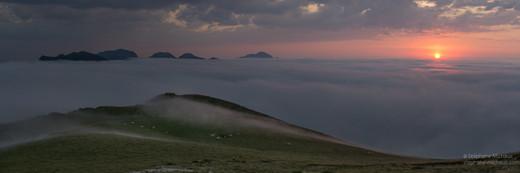 Panorama de vaches en montagne à la Pierre Saint Martin