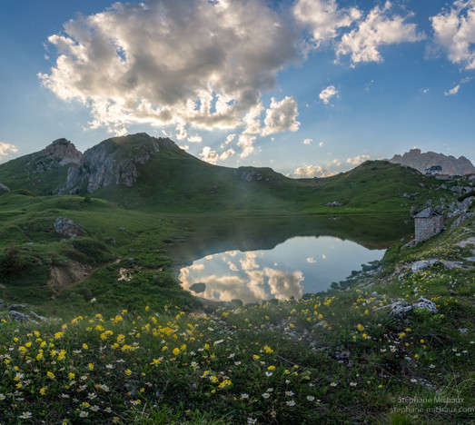Lago Di Valparola, fleurs et reflet des nuages aux lumières du soir