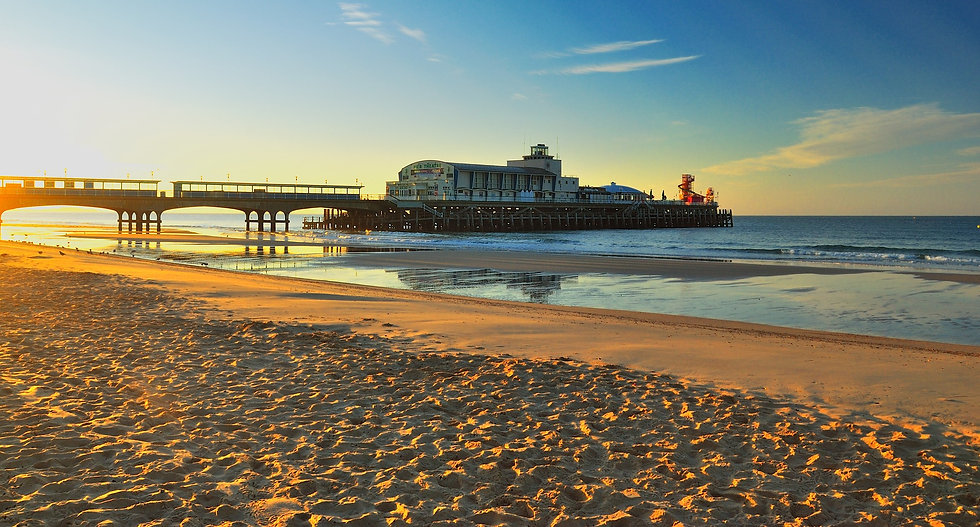 Pet Friendly Hotel in Bournemouth, Bournemouth Pier