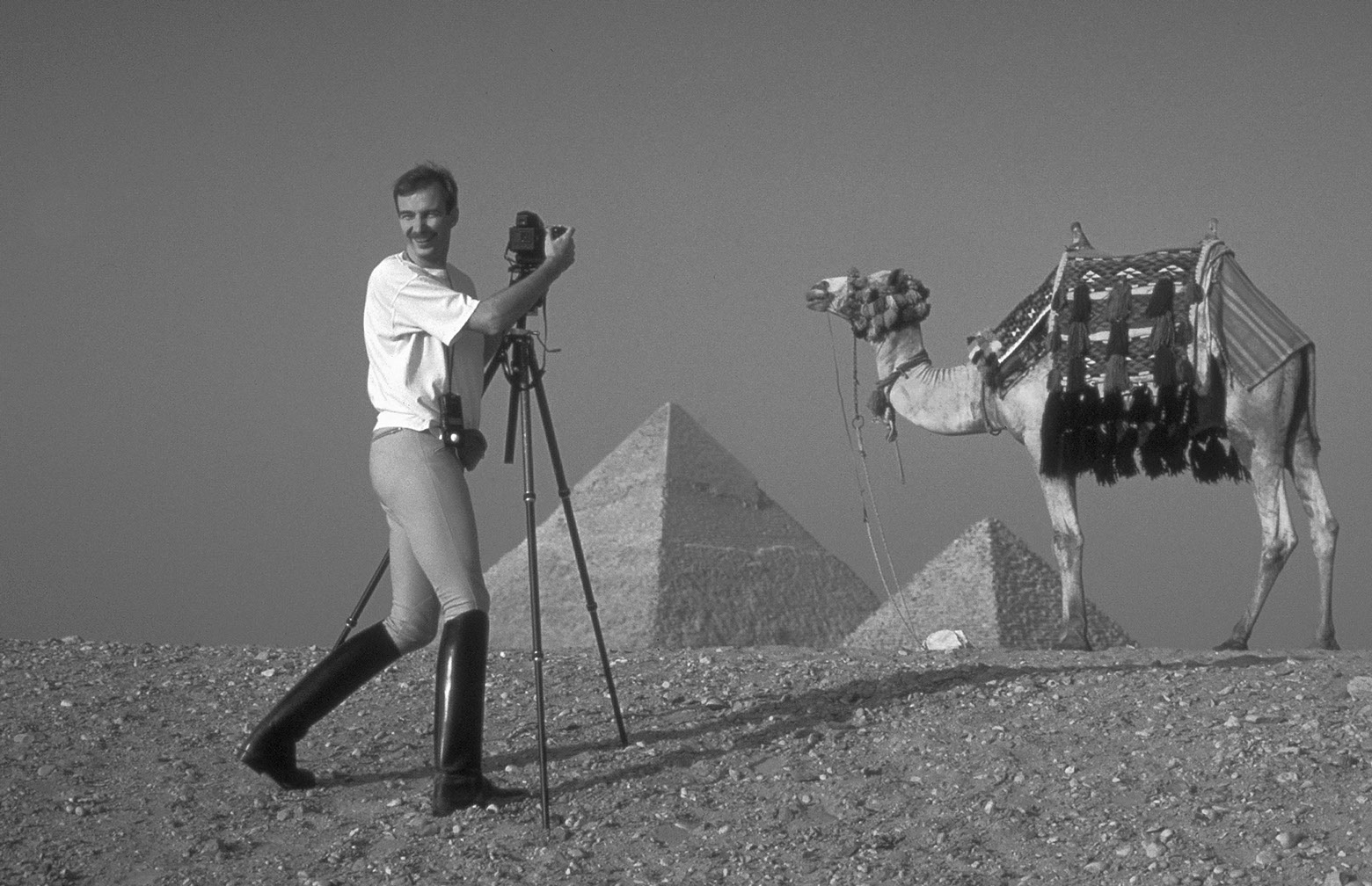 Will in Egypt
