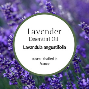 Lovely LAVENDER Essential Oil