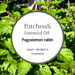 Earthy, Grounding PATCHOULI