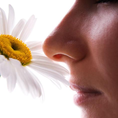 Passiflora Inhalers