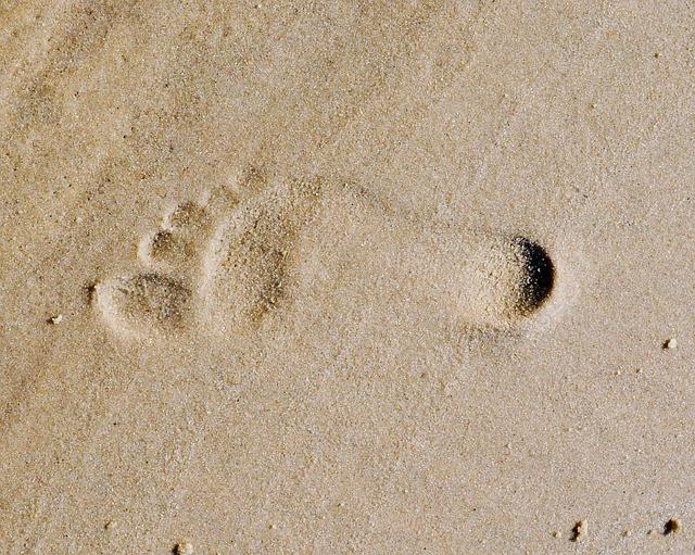 footprint-285191_640.jpg