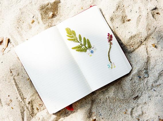 beach-2280942_640.jpg