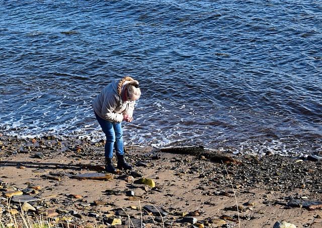 beachcomber-885737_640.jpg