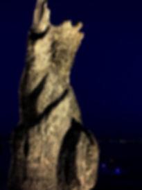 image8 (5).jpg