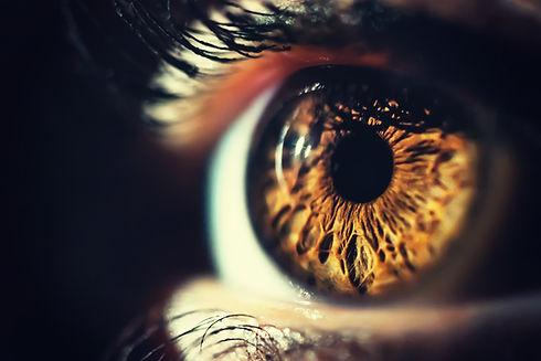 Human eye iris close up.jpg