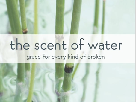the scent of water | book review + personal thoughts