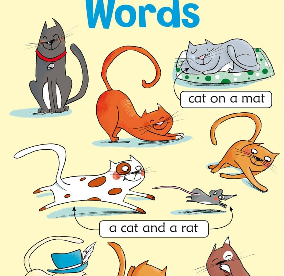 FIRST PHONICS WORDS