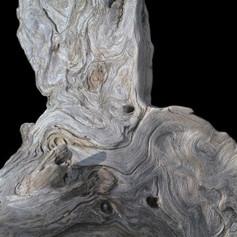 Eroding and Evolving